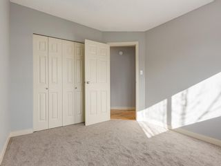 Photo 14: 25 Silverdale PL NW in Calgary: Silver Springs House for sale : MLS®# C4290404