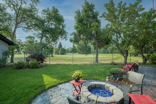 Photo 44: 164 Maple Court Crescent SE in Calgary: Maple Ridge Detached for sale : MLS®# A1144752