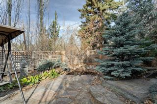 Photo 46: 2319 Juniper Road NW in Calgary: Hounsfield Heights/Briar Hill Detached for sale : MLS®# A1061277