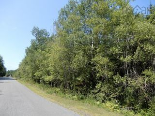 Photo 1: Lot West River Drive in Durham: 108-Rural Pictou County Vacant Land for sale (Northern Region)  : MLS®# 202122246