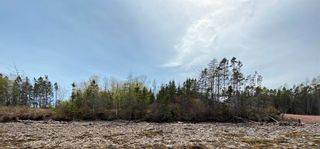 Photo 2: Lot Highway 320 in D'Escousse: 305-Richmond County / St. Peters & Area Vacant Land for sale (Highland Region)  : MLS®# 202112348