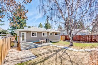 Photo 23: 359 Ashley Crescent SE in Calgary: Acadia Detached for sale : MLS®# A1115281