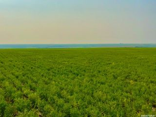 Photo 23: Unvoas Farm in Swift Current: Farm for sale (Swift Current Rm No. 137)  : MLS®# SK864766
