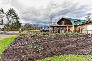 """Photo 5: 19834 80 Avenue in Langley: Willoughby Heights House for sale in """"Jericho Neighborhood Plan"""" : MLS®# R2232726"""
