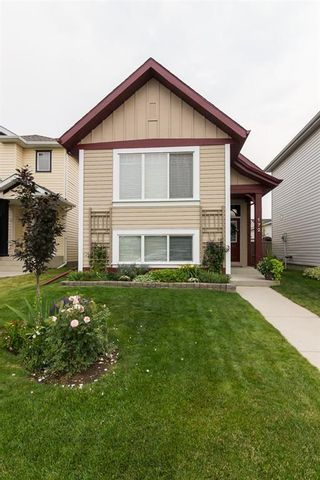 Photo 2: 172 COPPERFIELD Rise SE in Calgary: Copperfield Detached for sale : MLS®# C4201134
