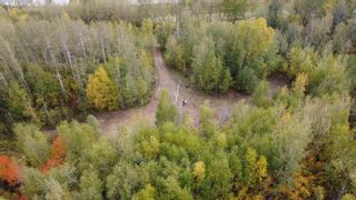 Photo 6: Hwy 11 & RR 53: Rural Parkland County Rural Land/Vacant Lot for sale : MLS®# E4265869