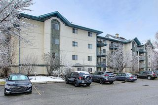 Photo 28: 110 11 DOVER Point SE in Calgary: Dover Apartment for sale : MLS®# A1118273