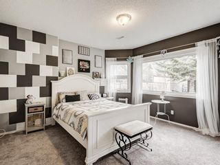 Photo 41: 54 Mount Robson Close SE in Calgary: McKenzie Lake Detached for sale : MLS®# A1096775