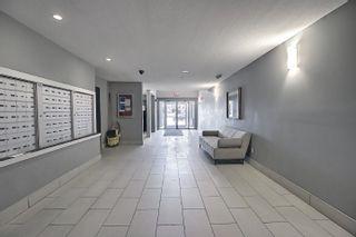 Photo 8: 115 14808 125 Street in Edmonton: Zone 27 Condo for sale : MLS®# E4247678