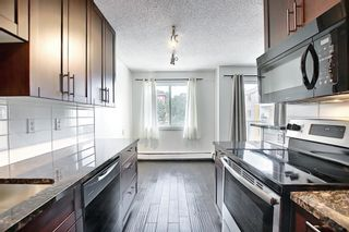 Photo 3: 303 4455A Greenview Drive NE in Calgary: Greenview Apartment for sale : MLS®# A1108022