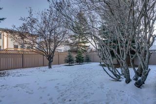 Photo 41: 239 Douglasbank Drive SE in Calgary: Douglasdale/Glen Detached for sale : MLS®# A1050993