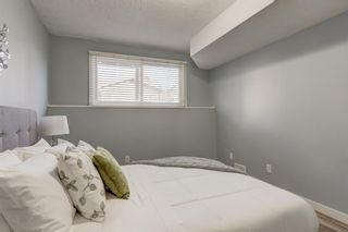 Photo 17: Unit C 130 29 Avenue NW in Calgary: Tuxedo Park Apartment for sale : MLS®# A1078880