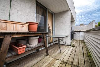 """Photo 16: 100 9151 NO 5 Road in Richmond: Ironwood Condo for sale in """"Kingswood Terrace"""" : MLS®# R2338227"""