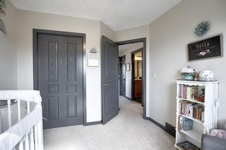 Photo 36: 44 CRANBERRY Way SE in Calgary: Cranston Detached for sale : MLS®# A1029590