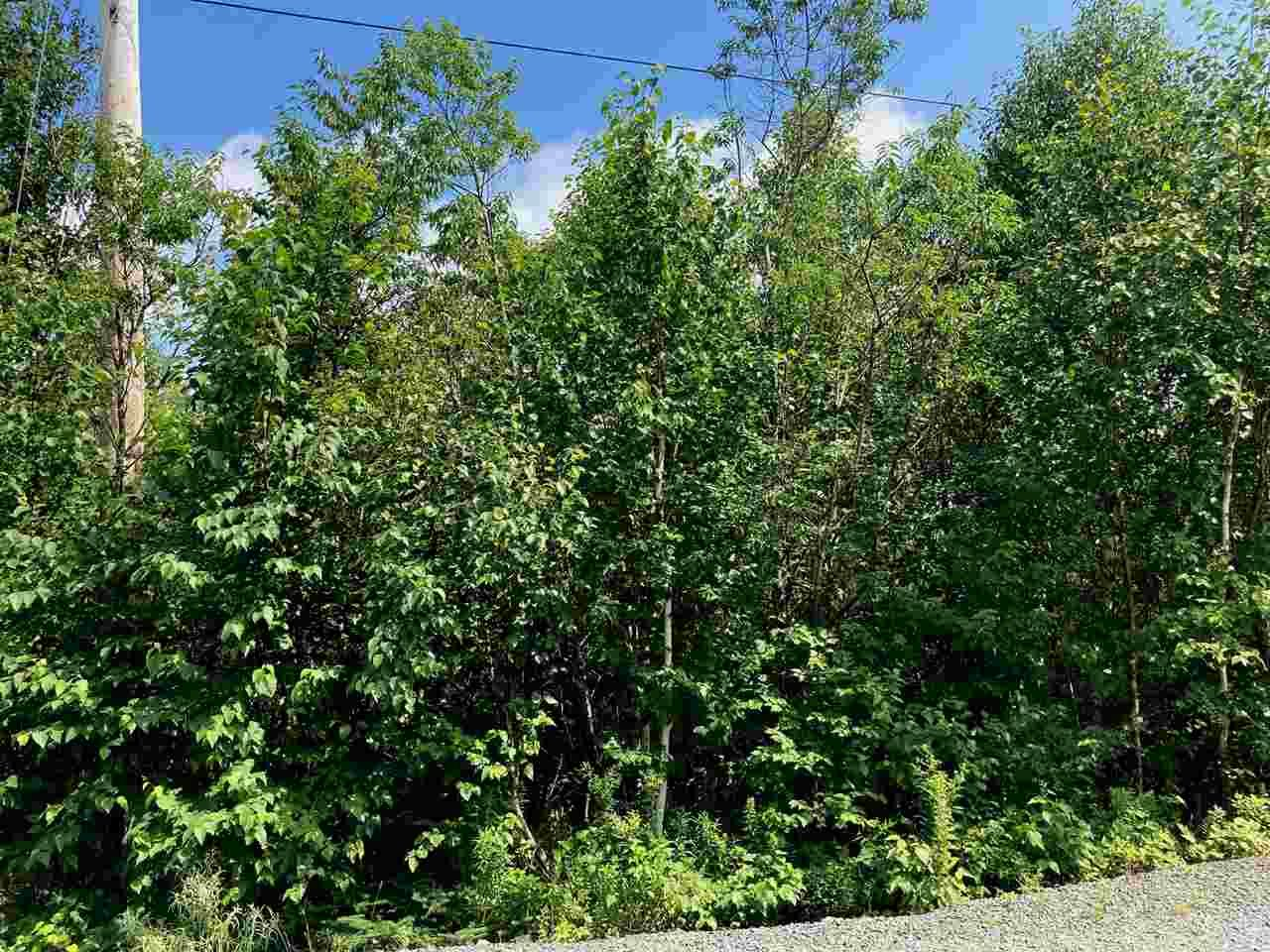 Photo 5: Photos: Lot 6 Anderson Drive in Goldenville: 303-Guysborough County Vacant Land for sale (Highland Region)  : MLS®# 202016652