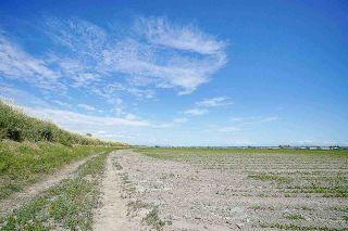 Photo 14: 16397 40 Avenue in Surrey: Serpentine Land for sale (Cloverdale)  : MLS®# R2586709