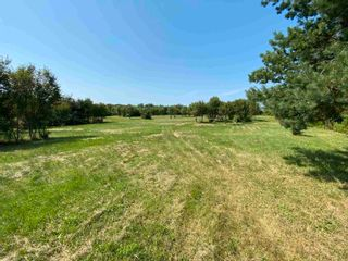 Photo 16: Shore Road in Merigomish: 108-Rural Pictou County Vacant Land for sale (Northern Region)  : MLS®# 202120405