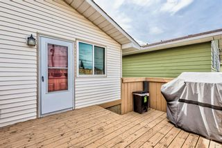 Photo 27: 114 Dovertree Place SE in Calgary: Dover Semi Detached for sale : MLS®# A1071722