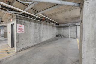 Photo 25: 243 308 AMBLESIDE Link in Edmonton: Zone 56 Condo for sale : MLS®# E4260650