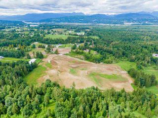 Photo 15: 31050 HARRIS Road in Abbotsford: Bradner House for sale : MLS®# R2588526