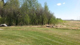 Photo 4: 59005 RGE  RD 240: Rural Westlock County Rural Land/Vacant Lot for sale : MLS®# E4184241