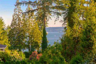 Photo 3: 3821 BAYRIDGE Avenue in West Vancouver: Bayridge House for sale : MLS®# R2376716
