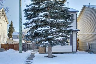 Photo 45: 148 Martinbrook Road NE in Calgary: Martindale Detached for sale : MLS®# A1069504