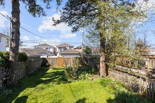 Photo 19: 3869 GLENGYLE Street in Vancouver: Victoria VE House for sale (Vancouver East)  : MLS®# R2590020