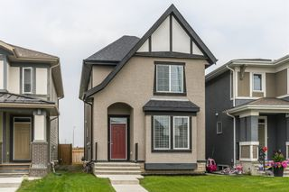 Main Photo: 158 Marquis Heights SE in Calgary: Mahogany Detached for sale : MLS®# A1131393