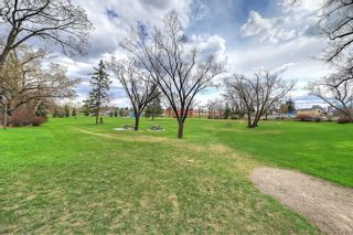 Photo 38: 228 27 Avenue NW in Calgary: Tuxedo Park Semi Detached for sale : MLS®# A1043141