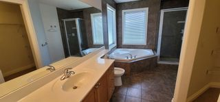 Photo 13: 250 CANAL Circle SW: Airdrie Detached for sale : MLS®# A1127167