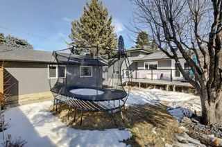 Photo 38: 6427 Larkspur Way SW in Calgary: North Glenmore Park Detached for sale : MLS®# A1079001
