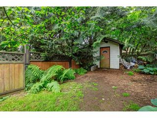 Photo 30: 2877 267A Street in Langley: Aldergrove Langley House for sale : MLS®# R2587278
