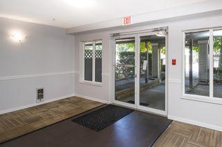 "Photo 4: 302 12160 80 Avenue in Surrey: West Newton Condo for sale in ""LA COSTA GREEN"" : MLS®# R2604668"