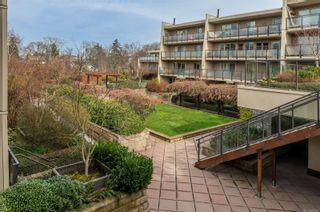 Photo 16: 209 1419 Stadacona Ave in : Vi Fernwood Condo for sale (Victoria)  : MLS®# 867028