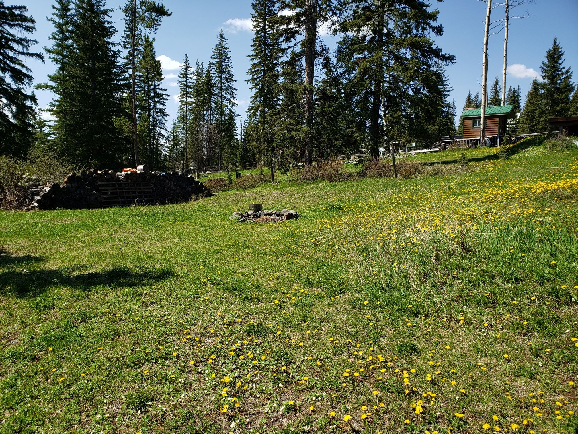 Photo 11: Photos: 4789 Atwater Road in : Logan Lake House for sale (Kamloops)  : MLS®# 157075