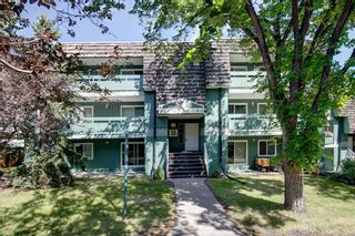 Photo 1: 4101 315 Southampton Drive SW in Calgary: Southwood Apartment for sale : MLS®# A1142058