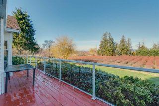 Photo 15: 17325 31 Avenue in Surrey: Grandview Surrey House for sale (South Surrey White Rock)  : MLS®# R2464563