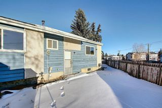 Photo 35: 57 Penworth Close SE in Calgary: Penbrooke Meadows Row/Townhouse for sale : MLS®# A1058735