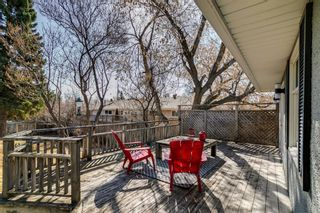 Photo 33: 436 38 Street SW in Calgary: Spruce Cliff Detached for sale : MLS®# A1097954