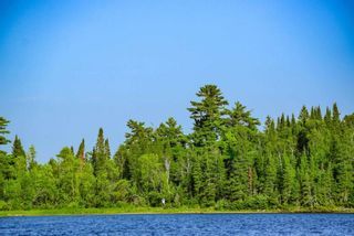 Photo 5: Lot 8 Five Point Island in South of Kenora: Vacant Land for sale : MLS®# TB212085