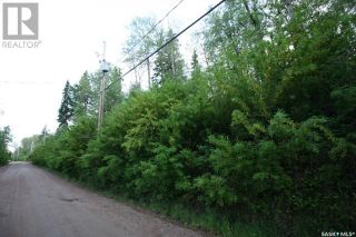 Photo 3: 156 Carwin Park DR in Emma Lake: Vacant Land for sale : MLS®# SK846952