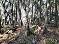 Photo 8: Lot 170 Halibut Hill in : Isl Mudge Island Land for sale (Islands)  : MLS®# 866549