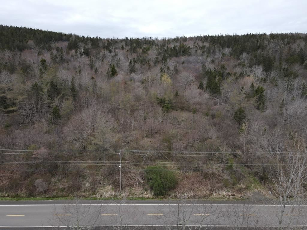 Main Photo: Lot 217 Highway in Rossway: 401-Digby County Vacant Land for sale (Annapolis Valley)  : MLS®# 202111048