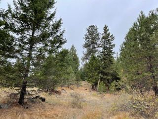 Photo 6: 490 WAPITI Way, in Osoyoos: Vacant Land for sale : MLS®# 191574