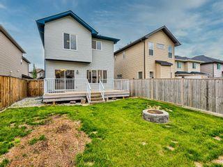 Photo 45: 29 SILVERADO SADDLE Heights SW in Calgary: Silverado Detached for sale : MLS®# A1009131