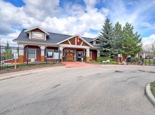 Photo 40: 118 Auburn Shores Crescent SE in Calgary: Auburn Bay Detached for sale : MLS®# A1110641