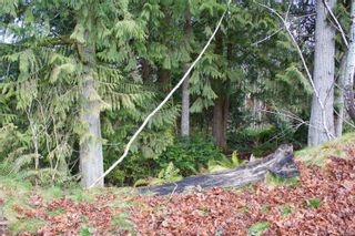 Photo 88: 477 Point Ideal Dr in : Du Lake Cowichan House for sale (Duncan)  : MLS®# 867468