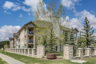 Photo 32: 107 3000 Citadel Meadow Point NW in Calgary: Citadel Apartment for sale : MLS®# A1070603