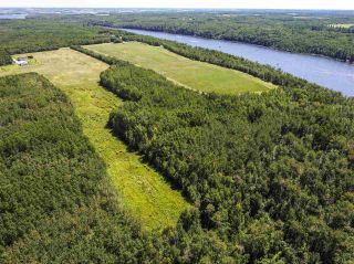 Photo 9: RR 274 TWP 481: Rural Leduc County Rural Land/Vacant Lot for sale : MLS®# E4224890